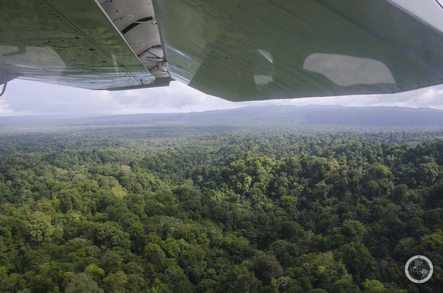 Corcovado (Kostaryka) Widokz samolotu