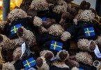 Szwedzkie łosie