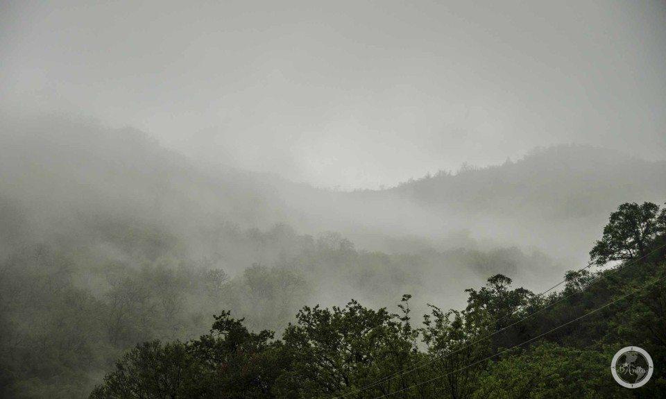 Przywitała nas mgła naddzungla