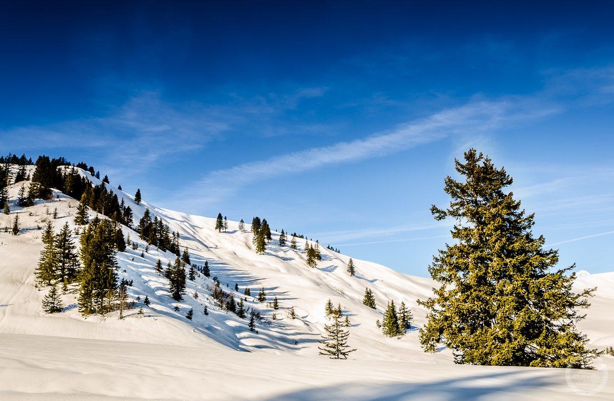 Ośnieżone zbocze. Lombachalp, Szwajcaria