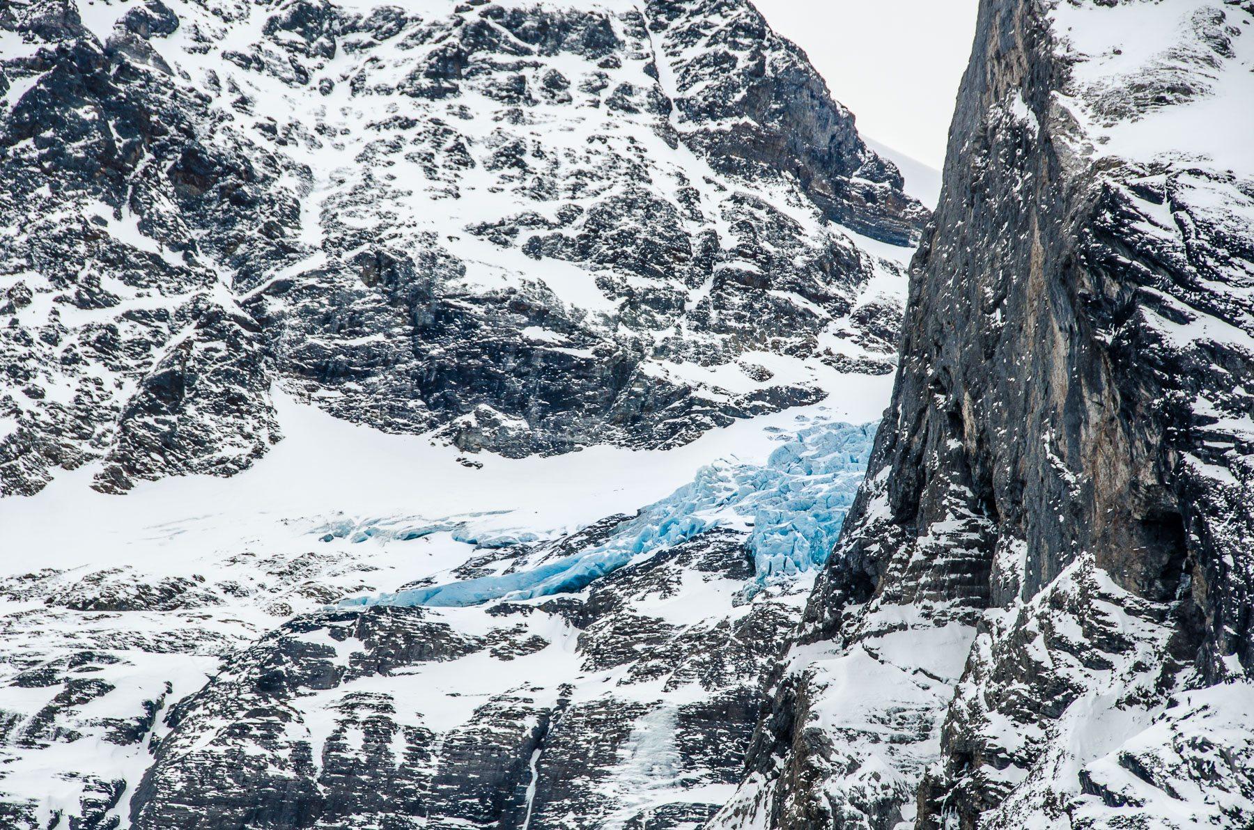 Błękitny jęzor lodowca pomiędzy skalistymi zboczami. Schwardzwaldalp, Szwajcaria