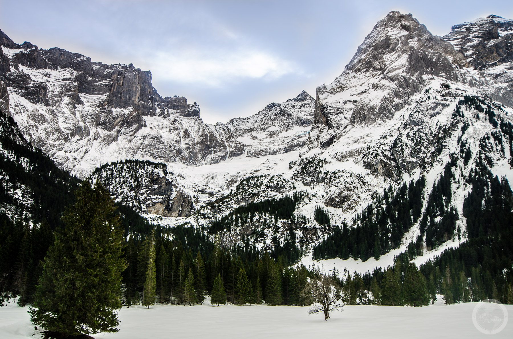 Skaliste Alpy. Schwarzwaldalp, Szwajcaria