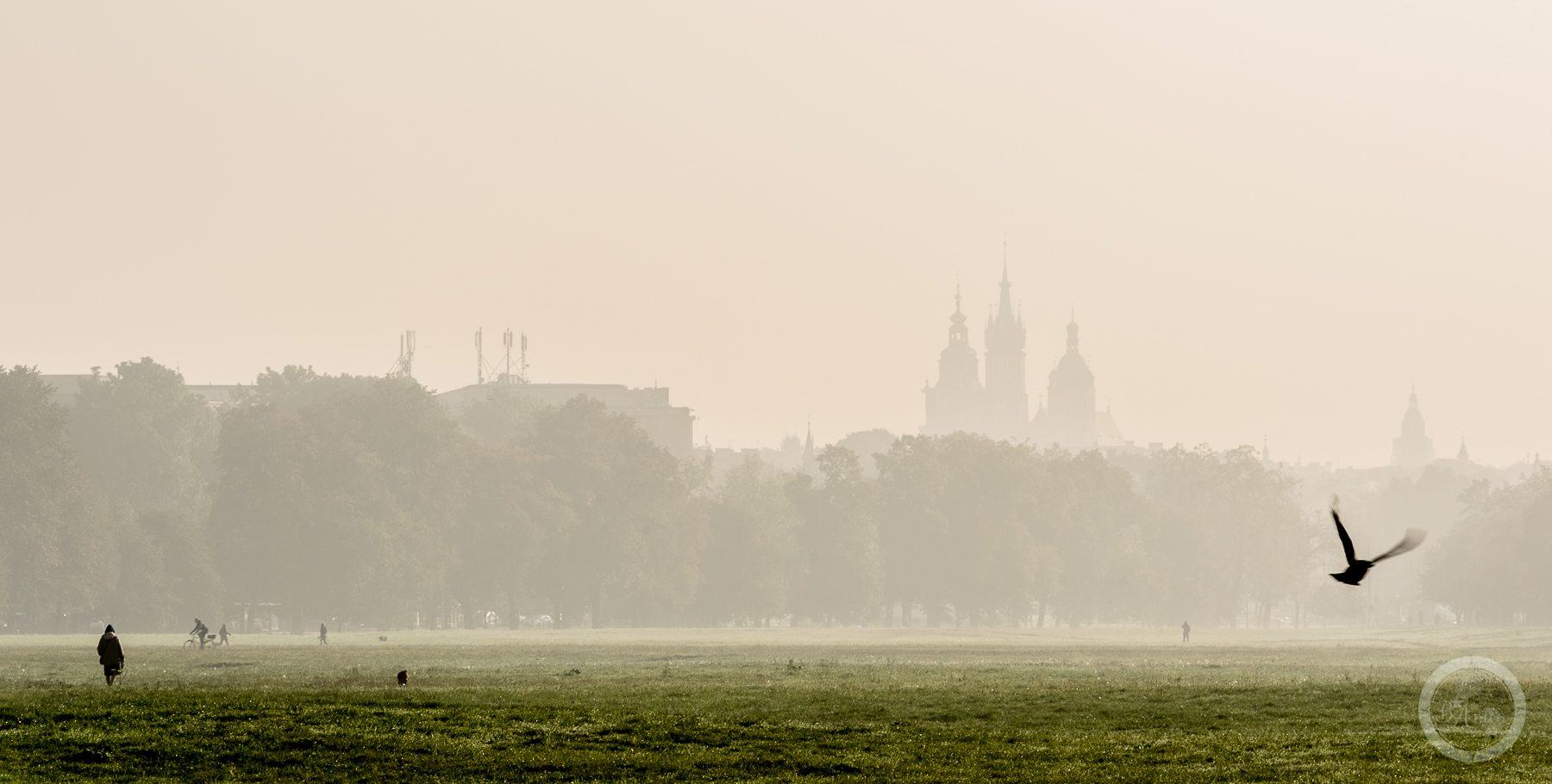 krakow-blonia-3