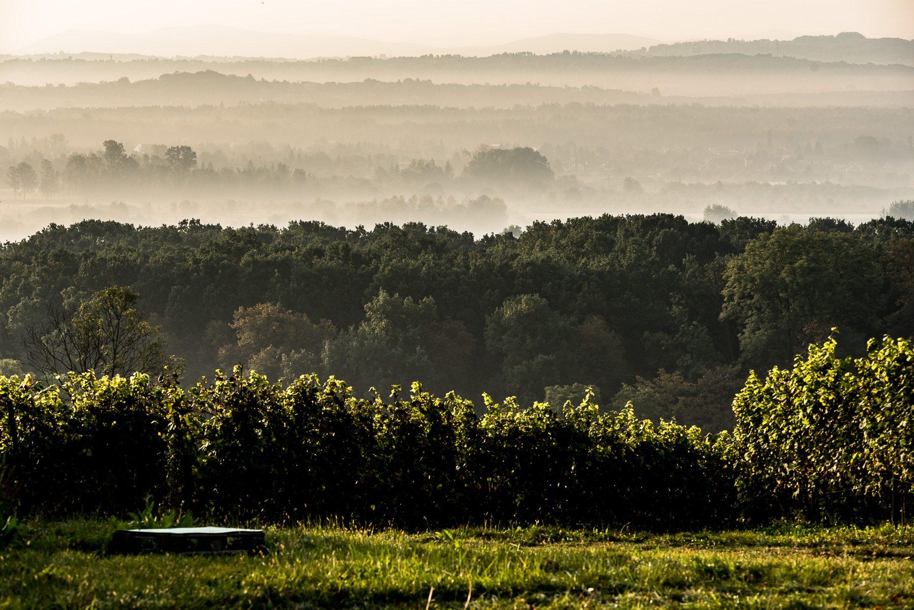 krakow-winnice-srebrna-gora-2