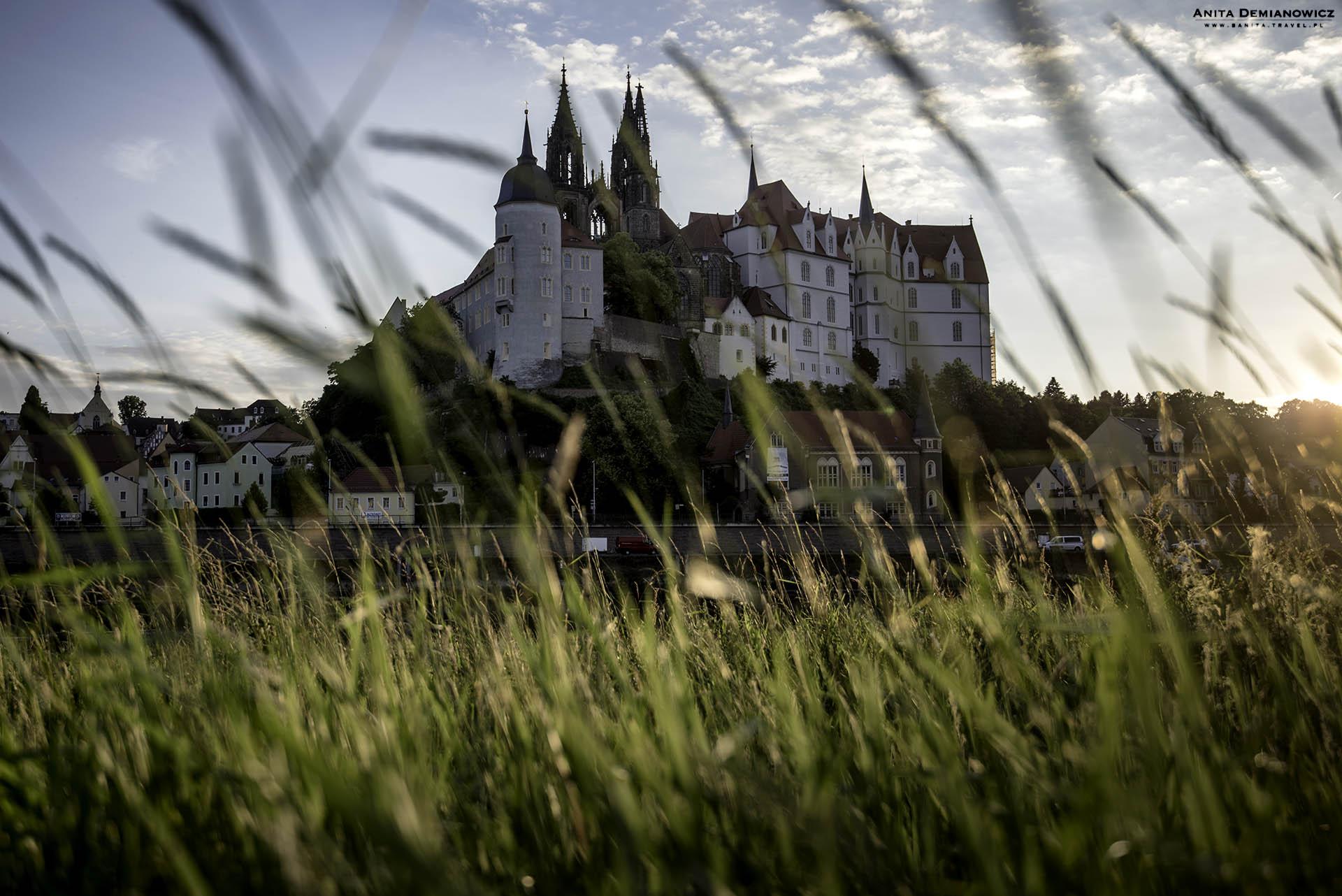 Zamek Albrechta w Miśni
