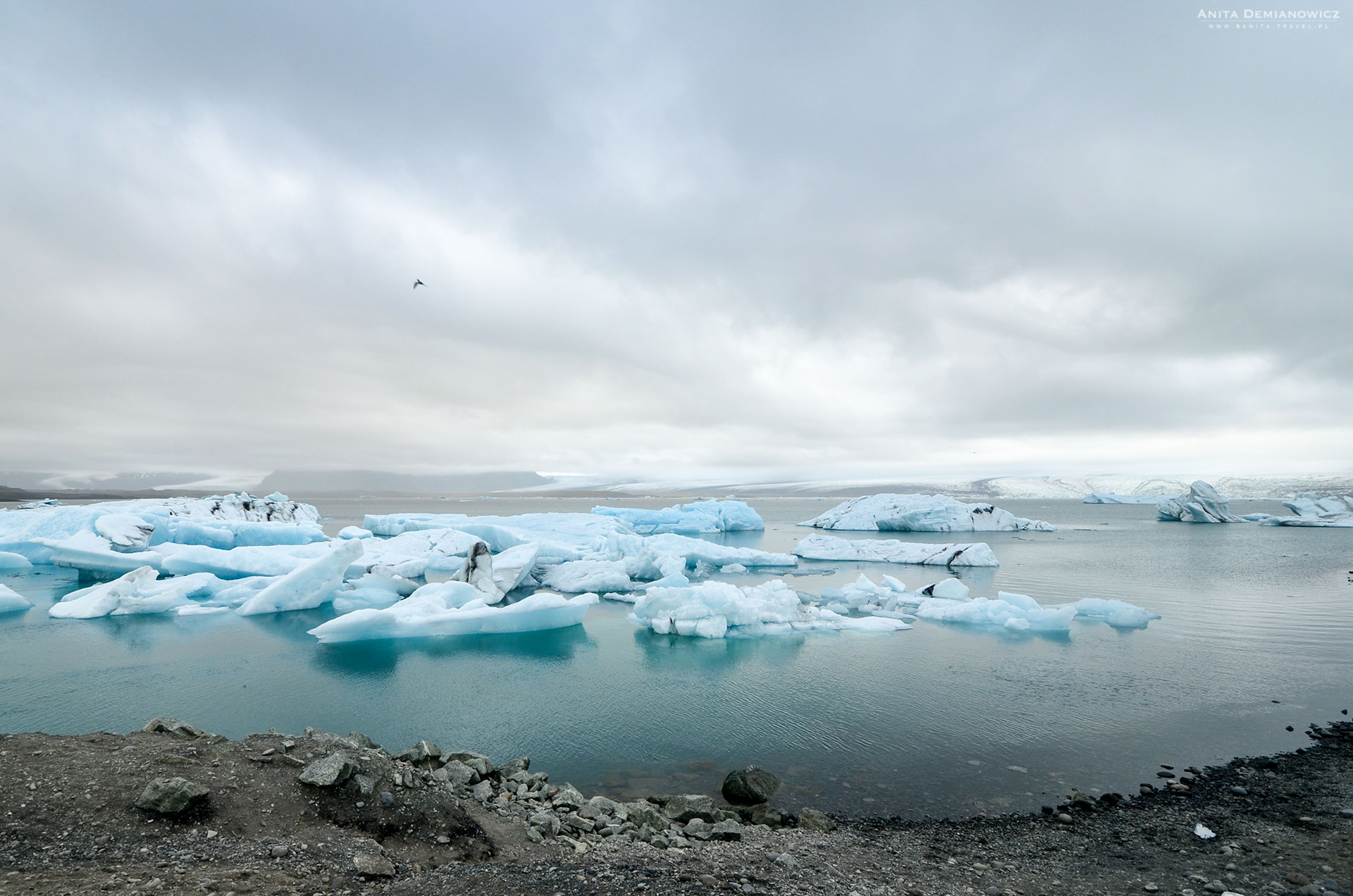 Zatoka-lodowcowa,-Jokulsarlon,--Islandia,-Anita-Demianowicz
