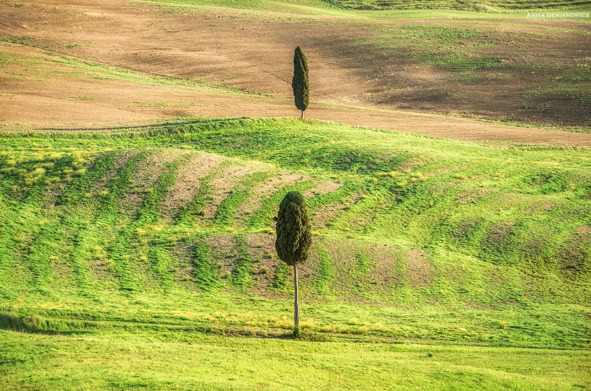 Val-d'Orcia, droga Gladiatora, Tuscany, Toskania, Włochy