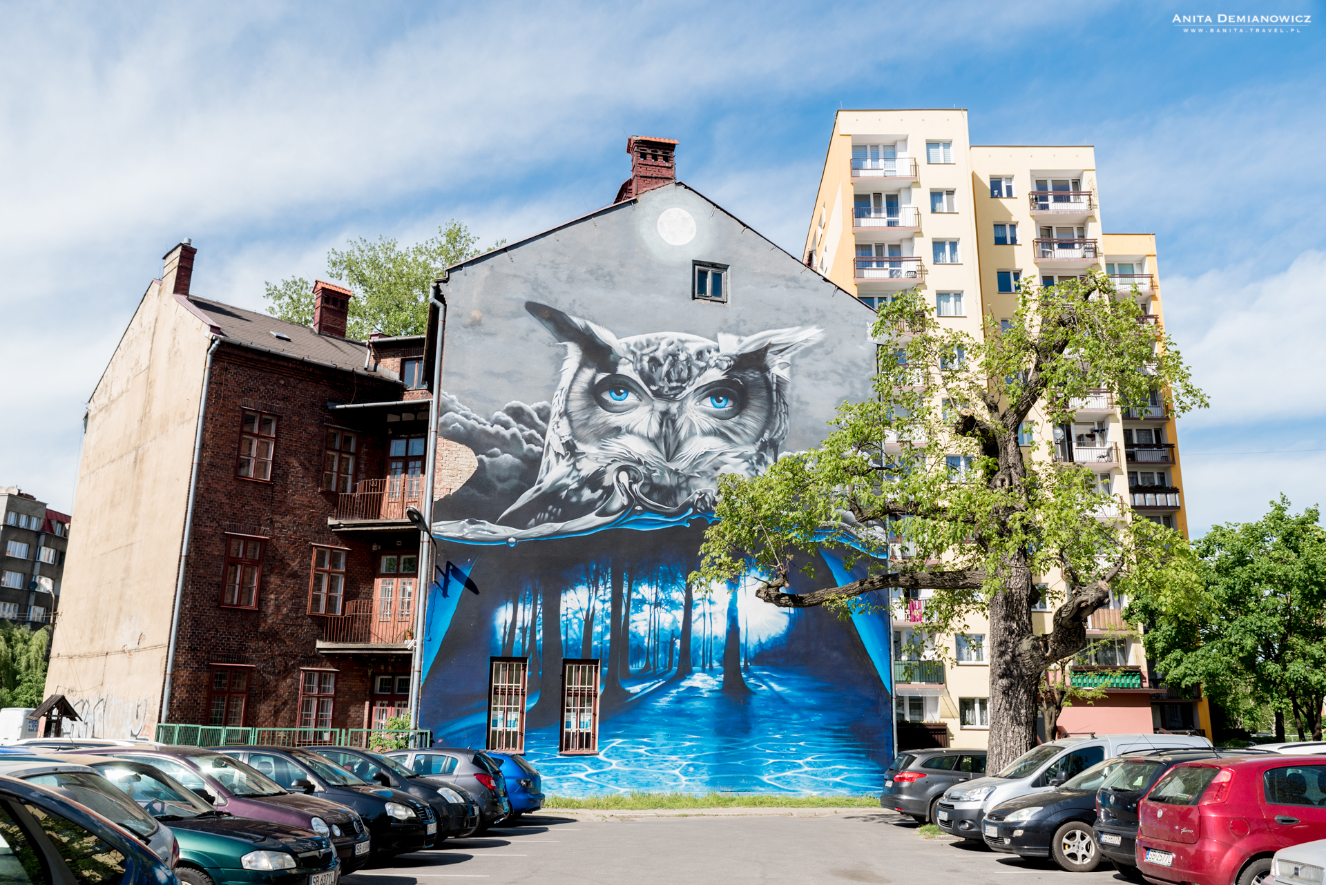 Mural-sowa,-Bielsko-Biała