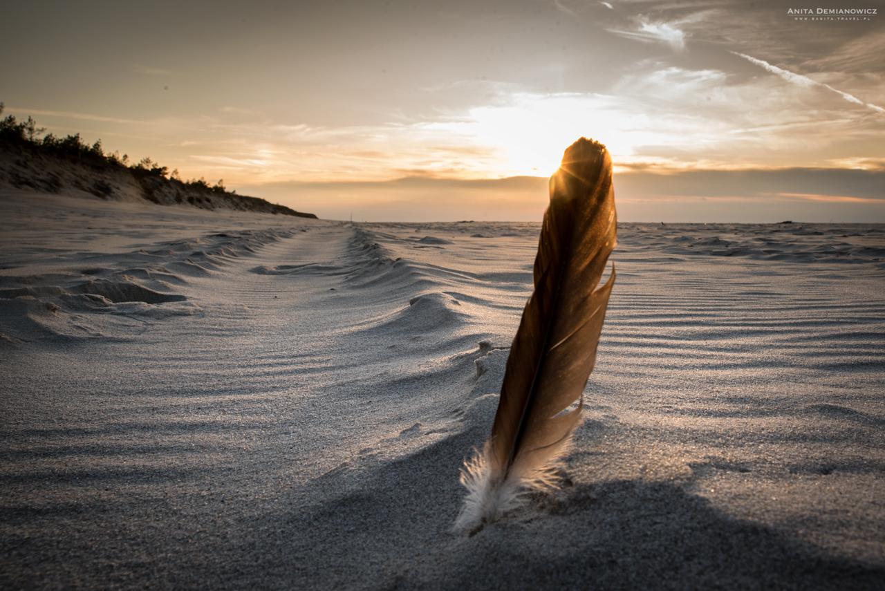 Dzika plaża Stilo nadMorzem Bałtyckim