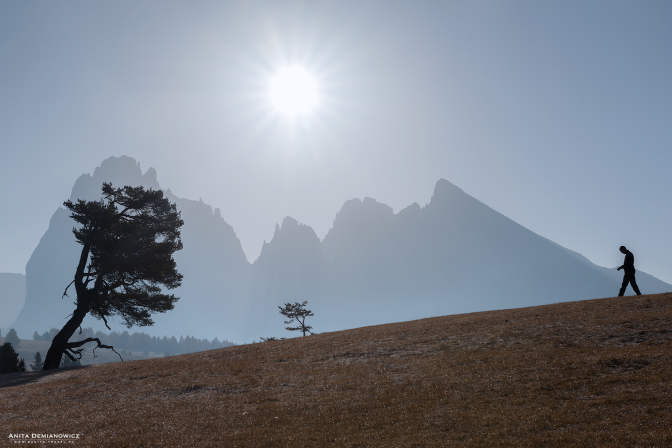 Dolomity, Alpe di Siusi