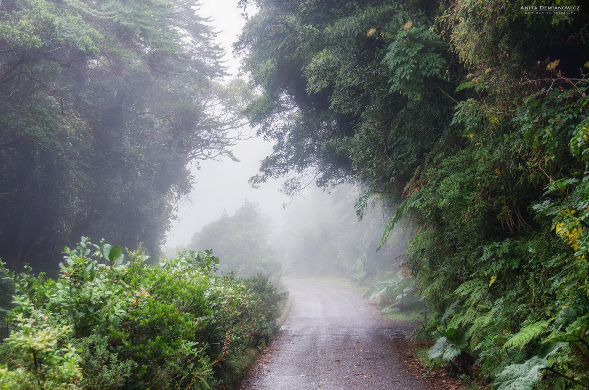 Kostaryka, Poas